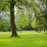 Harrison-Holiday-Park-360hometours-set2-60